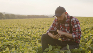 A man using a tablet while crouching in a field.